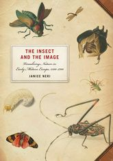 The Insect and the ImageVisualizing Nature in Early Modern Europe, 1500-1700
